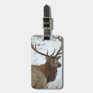 Bull elk in winter in Yellowstone National Luggage Tag