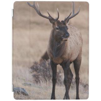 Bull Elk or Wapiti iPad Cover