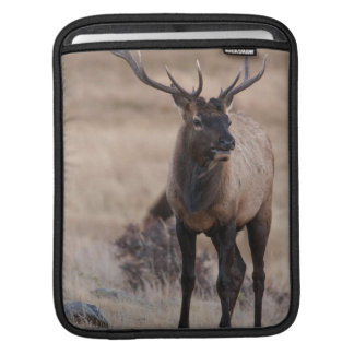 Bull Elk or Wapiti iPad Sleeve