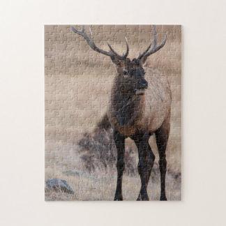 Bull Elk or Wapiti Jigsaw Puzzle