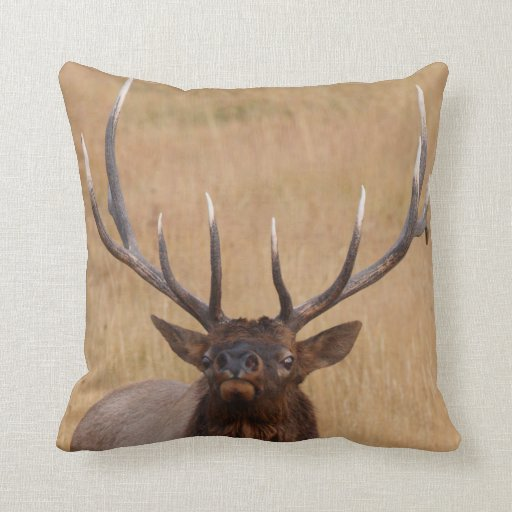 bull elk throw cushion