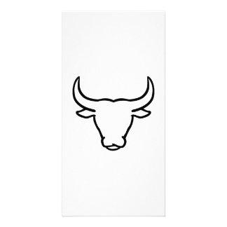 Bull horns photo greeting card