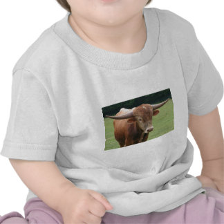 Bull in the field t-shirts