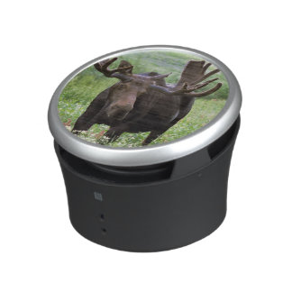 Bull moose Alces alces) in wildflowers, Bluetooth Speaker