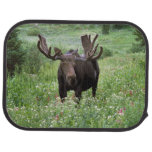 Bull moose Alces alces) in wildflowers, Car Mat