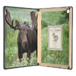 Bull moose Alces alces) in wildflowers, Cover For iPad Air