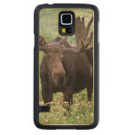 Bull moose Alces alces) in wildflowers, Maple Galaxy S5 Case