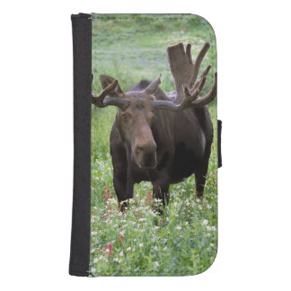 Bull moose Alces alces) in wildflowers, Phone Wallets