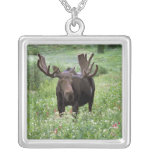 Bull moose Alces alces) in wildflowers, Square Pendant Necklace