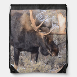 Bull Moose in field with Cottonwood Trees Drawstring Bag