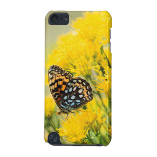 Bull Moose jousting in field with Cottonwood Trees iPod Touch (5th Generation) Case