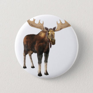Bull Moose Looking to the Front 6 Cm Round Badge
