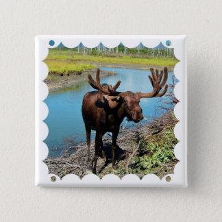 Bull Moose Square Pin