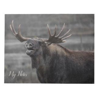 Bull moose yawning photo, nature animal, notebook notepad