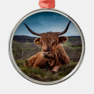 Bull on Grass Silver-Colored Round Decoration