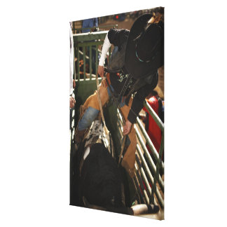 Bull rider tying rope on bull in the chute canvas print