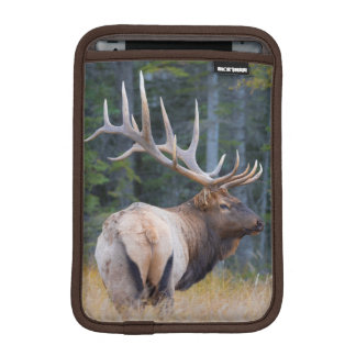 Bull Rocky Mountain Elk iPad Mini Sleeve