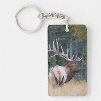 Bull Rocky Mountain Elk Key Ring