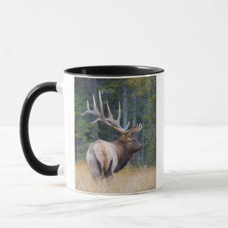 Bull Rocky Mountain Elk Mug