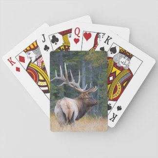 Bull Rocky Mountain Elk Playing Cards