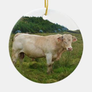 Bull Round Ceramic Decoration
