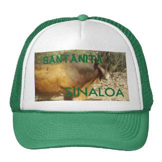 bull, SANTANITA, SINALOA - Customized Cap