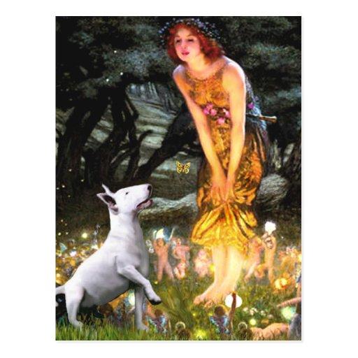 Bull Terrier 1 - MidEve Postcards