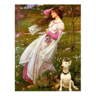 Bull Terrier 1 - Windflowers Postcard