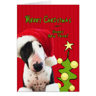 Bull Terrier Christmas Greeting Card