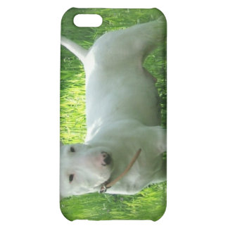 Bull Terrier Dog iPhone Case iPhone 5C Case