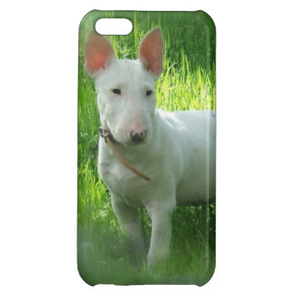 Bull Terrier Case For iPhone 5C