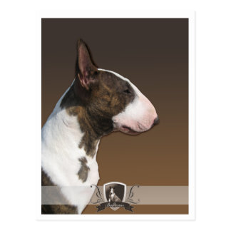 Bull terrier PostCard 2011