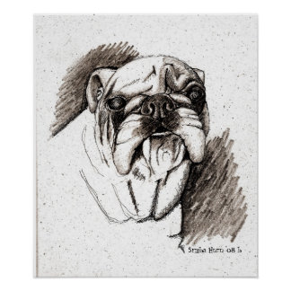 Bull Time Dog Poster