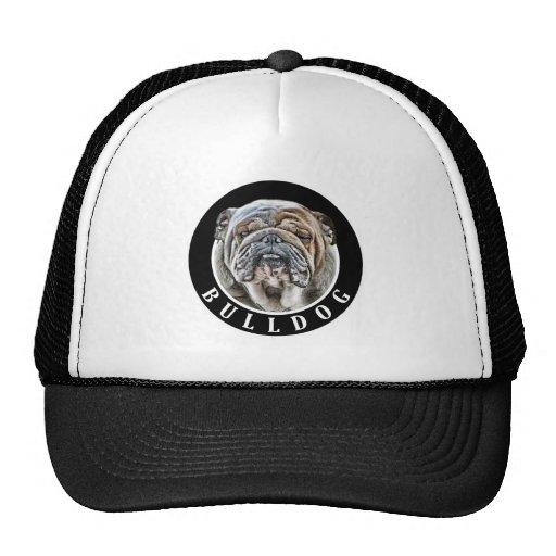 Bulldog 002 mesh hats