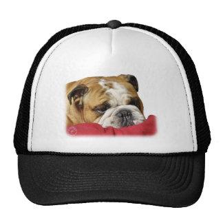 Bulldog 9W099D-003 Cap