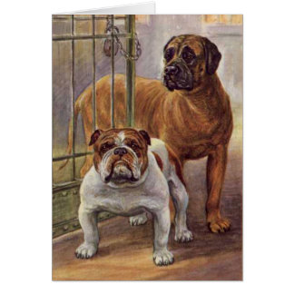 Bulldog and Mastiff  Vintage Greeting Card