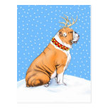 Bulldog Christmas Reindeer Red & White Post Cards