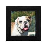 Bulldog dog Gift Box