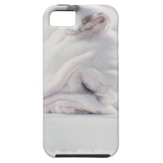 Bulldog Eating Case For The iPhone 5