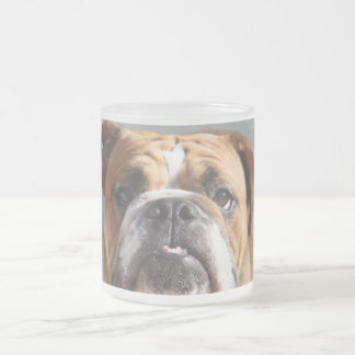 Bulldog Face - English Bulldog, Brown Frosted Glass Coffee Mug