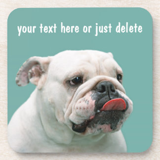 Bulldog funny face with tongue sticking out custom coaster
