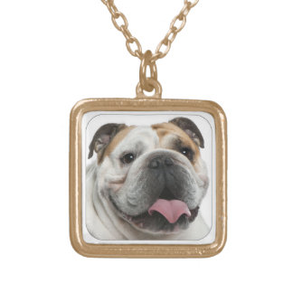 bulldog gold plated necklace