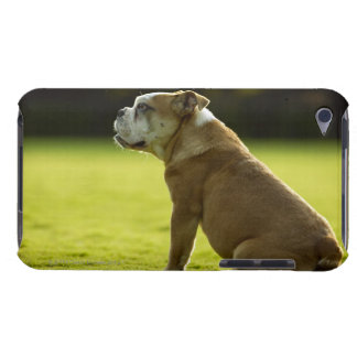 Bulldog in field barely there iPod covers