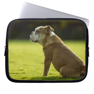 Bulldog in field laptop sleeve