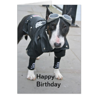Bulldog in Gothic Outfit Happy Birthday Card