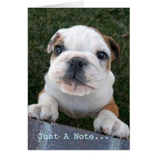 Bulldog Just A Note... Note Card