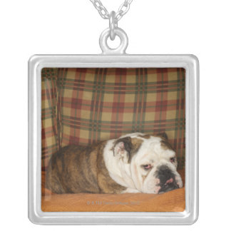 bulldog lying on a sofa silver plated necklace