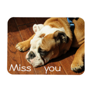 "Bulldog ""Miss You"" Magnet 44"