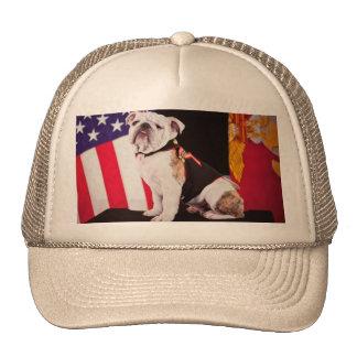 Bulldog Navy Official Mascot Dog Trucker Hat
