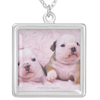 Bulldog; often called the English Bulldog. Is a Silver Plated Necklace